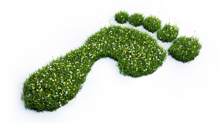 Sustainability Reporting: dotBERLIN's Journey to More Sustainability