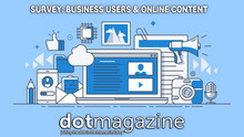 Business Users & Online Content: Survey